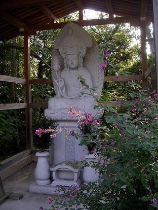 Jokomyoyokihi070928