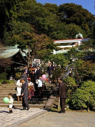 Kamakuragu071104