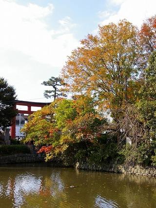 Hachimangenji071123