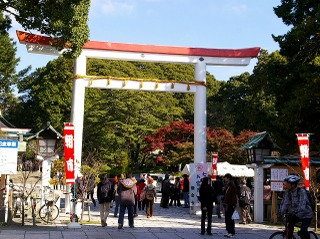 Kamakuragu071123