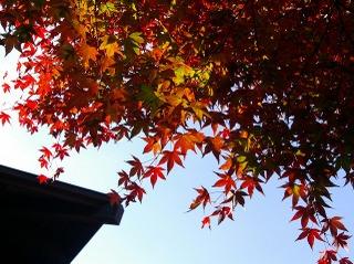 Kamakuragukoyo0711232
