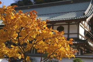 Kenchokoyo0712012