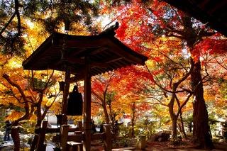 Kakuonshoro071206