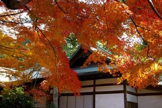 Kamakuragukoyo0712062