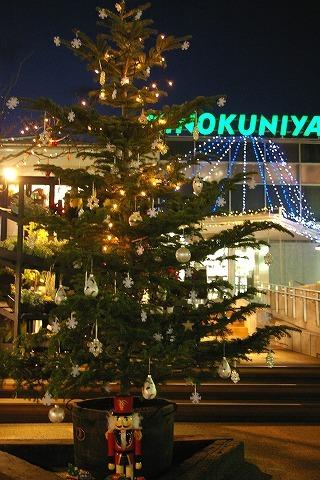 Kinokuniya071210