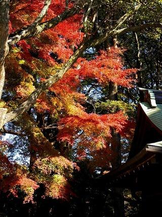 Kamakuragukoyo0712162
