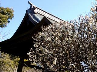 Hokaishoro080227