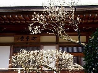 Hokokukashodo080229