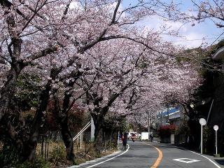 Kamakurayama0803282