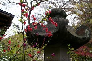 Ankokuboke080329