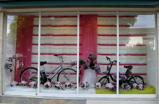 Rentacycle0805152