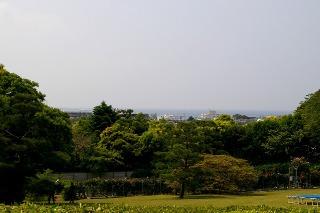 Bungakukanumi080517