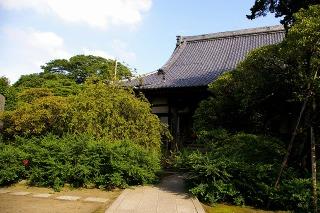 Hokaihagi080904