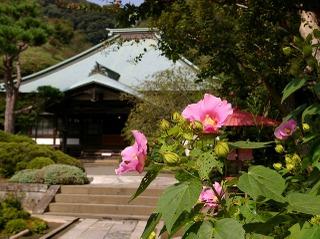 Kaizofuyo080917