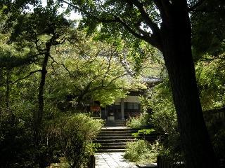 Ankokuronji081003
