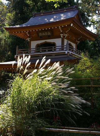 Jochisusuki081016