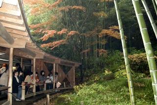 Hokokuchaseki081116
