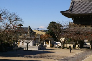 Komyofuji081122