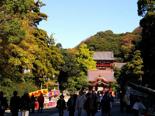 Hachimankoyo0811264