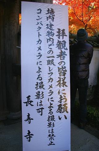 Chojuji081130