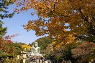 Daibutukoyo081204