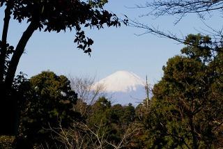Kuzuharafuji081207