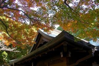 Kamakuragukoyo081215