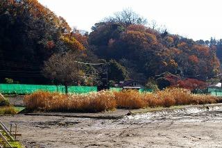 Yofukuji081215