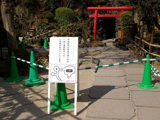 Hasekojichu090216