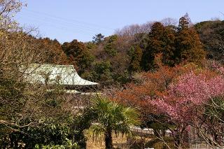 Ryuhojikobai090305