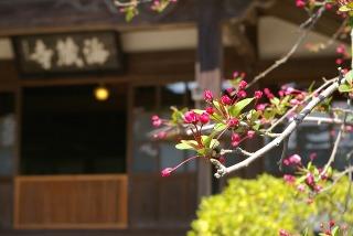 Kaizojikaido090327