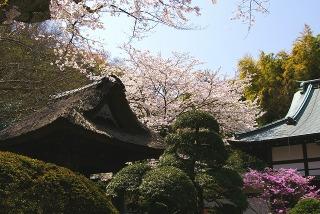 Hokokujishoro090406