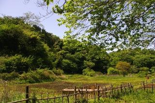 Chuokoen0904264