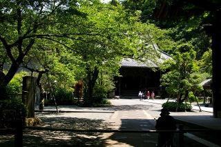 Myohonji090509