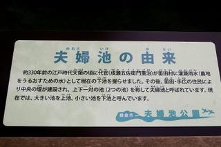 Meotoikeyurai090511