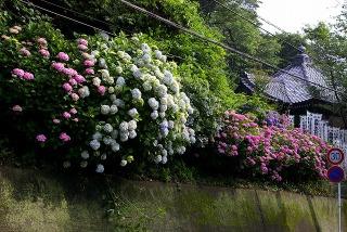 Kokuzodo050617