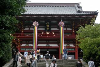 Tanabatakazari0906302