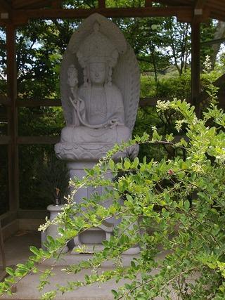 Jokomyojiyokihikannon090714