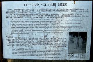 Inamurakochhi0908292