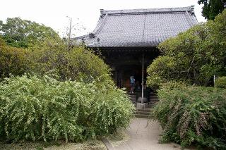 Hokaijihagi090918