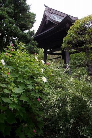 Hokaijisyoro090918