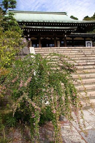 Ryuhojihagi090923