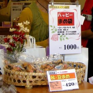 Kamakuramameya0910123
