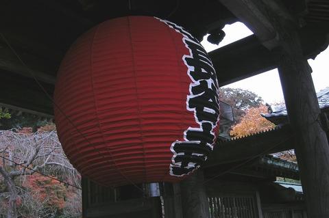 Hasederakoyo0911243