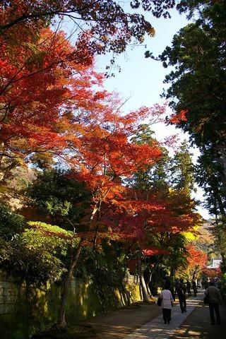 Engakujikoyo091201