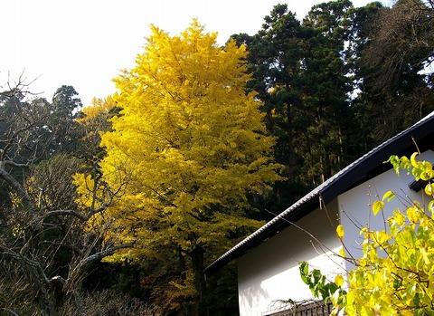 Tokeijiicho091201