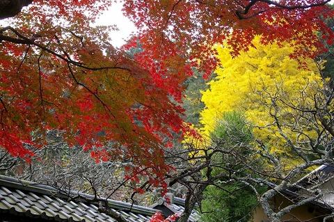 Tokeijikoyo0912013