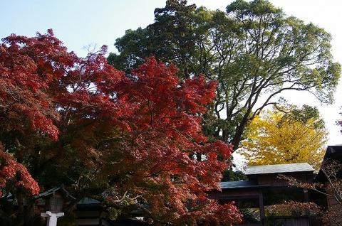 Kamakuragukoyo091202