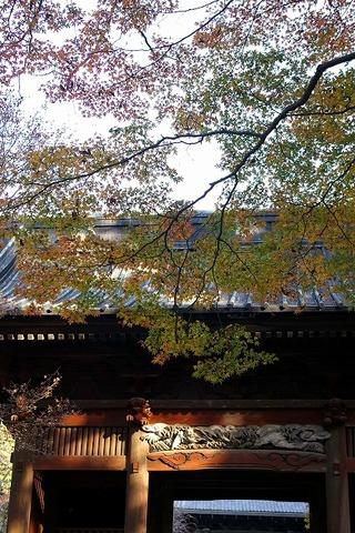 Myohonjisanmonkoyo091208