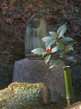 Tokeijijizo100124